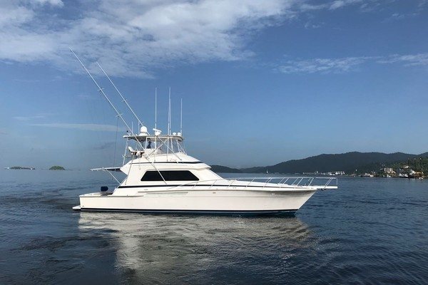 Picture Of: 54' Bertram 54 Convertible 1996 Yacht For Sale | 4 of 47
